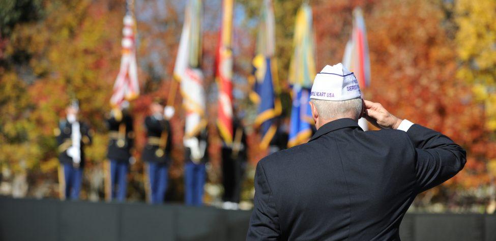 Veterans Day 2010- Bill Petros -067