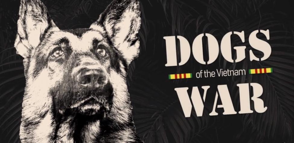 Dogs of the Vietnam War